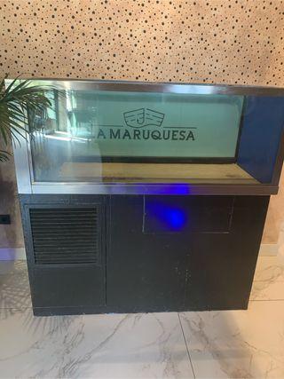 Acuarium de agua salada