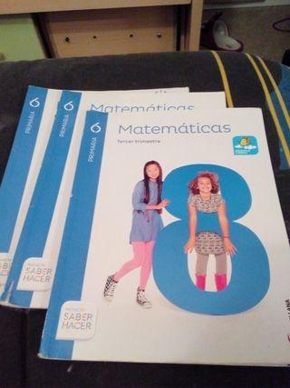 bloque de libros de matemáticas sexto de primaria