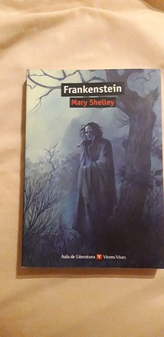 Frankenstein vicens vives