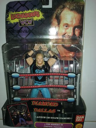Diamond Dallas ( WFW)