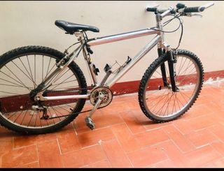 Bici de montaña con cuadro de aluminio