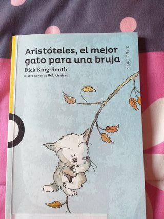 libro infantil +6 años