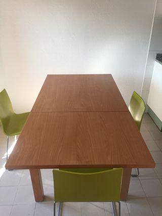 Mesa de comedor y sillas / Taula i cadires
