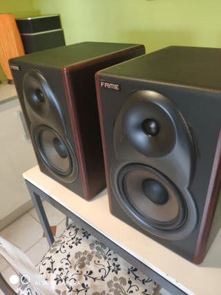 Monitores Fame 5080