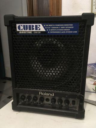 Dos monitores Roland 30W