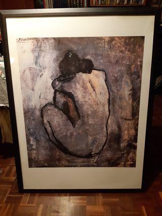 Lamina Picasso