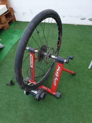 rodillo bicicleta + rueda de 29'