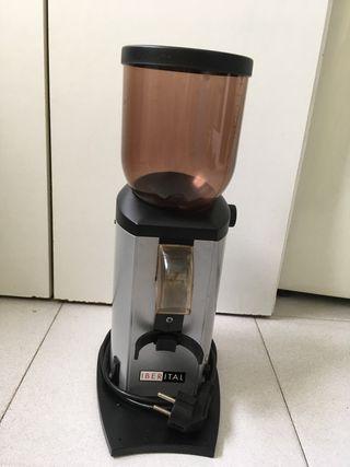 Molinillo café profesional