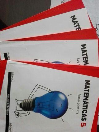 Libro Matemáticas Anaya 5° primaria