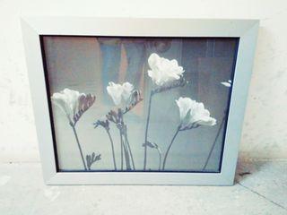 Cuadro Flores Blancas Nuevo Tienda