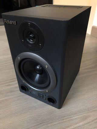 Monitor de estudio Roland DS30A