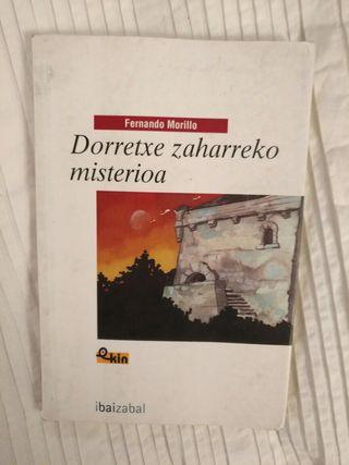"""Libro """"dorretxe zaharreko misterioa"""" liburua"""