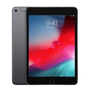 iPad Mini 5 256 Gb Wifi + 4G Gris Espacial