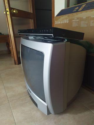TV + DVD