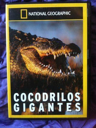Cocodrilos gigantes - National Geographic
