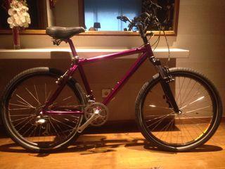 Bicicleta paseo Verlicchi de colección