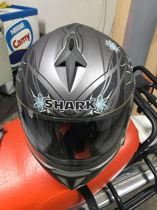 Casco shark