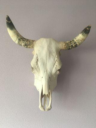 Cabeza decoración boho