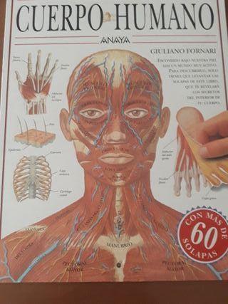 libro cuerpo humano