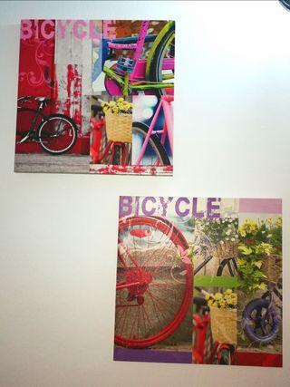 2 Cuadros bicicletas.