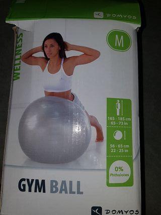 pelota gym