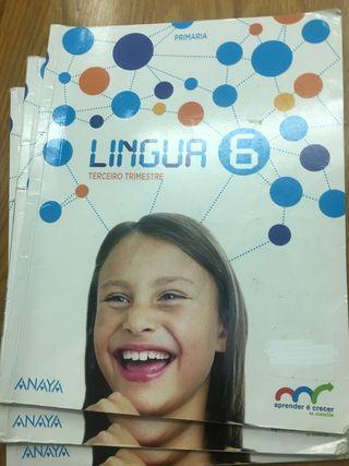 Libros lingua sexto de primaria anaya