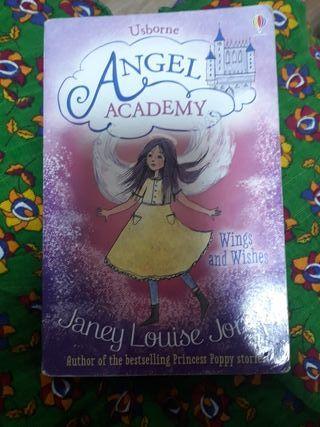 angeo academy