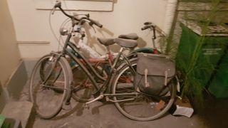 vélo gazzelle + sacoches