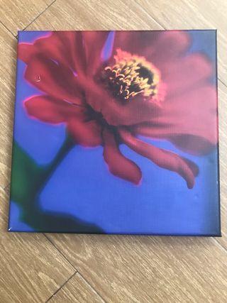Cuadro ikea flores