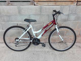 bicicleta adulto chica