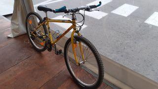 bicicleta kastle adulto