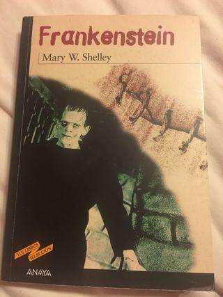 Libro Frankenstein Mary Shelley Anaya