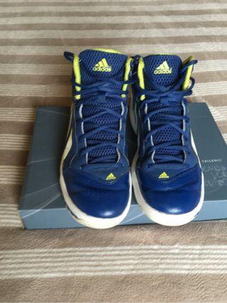 Zapatillas baloncesto. 638423309