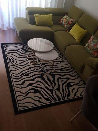 alfombra cebra 225 x 160 metros