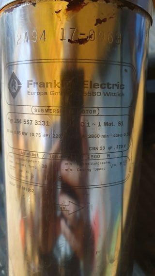 Motor Franklin Electric