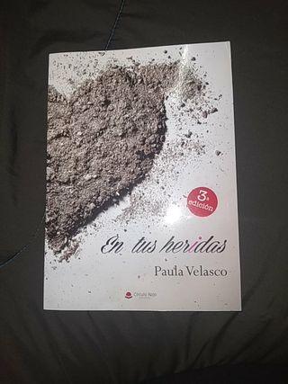 En tus heridas de Paula Velasco