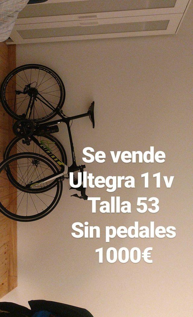 Bicicleta Giant TCR Carbono Ultegra 11v