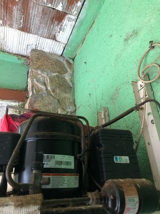 Compreso y ventilador de camara frigorifica bajo 0