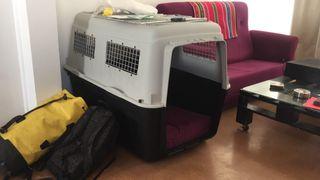 Caja transportadora de perro