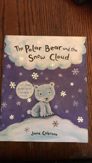The polar bear and the snow cloud