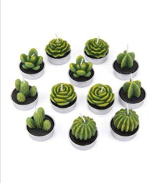 12 Piezas Velas en Forma de Planta, Hechas a Mano