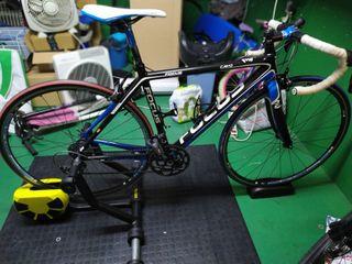 Bicicleta Focus Cayo Carbono