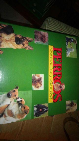 coleccion Perros conocerlos y amarlos
