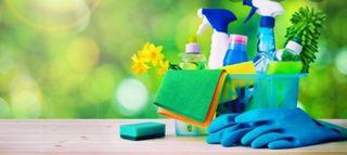 limpiadora profesional