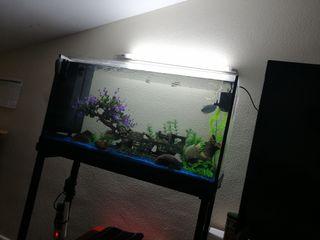 acuario 120 litros con mesa