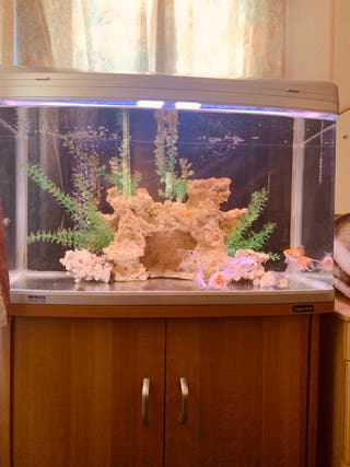 Aqua one aquarium tank ar-850
