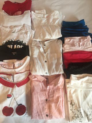 Lote 13 jerseis y 2 camisas