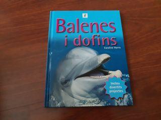 llibre balenes i dofins