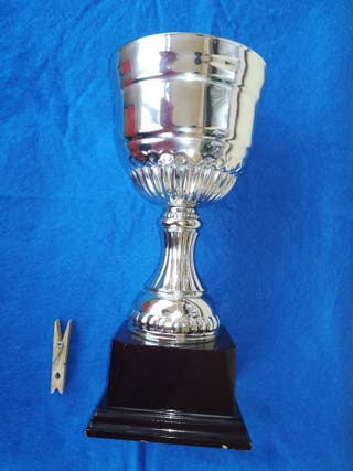 Copa trofeo competición