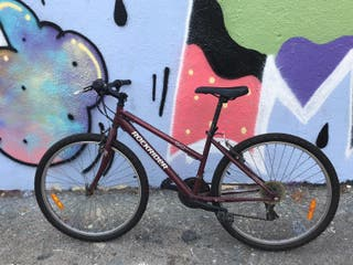 bicicleta junior rockrider 5.0